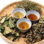 口コミ予約殺到!斐川中央クリニック痩せるお茶のダイエット効果は?
