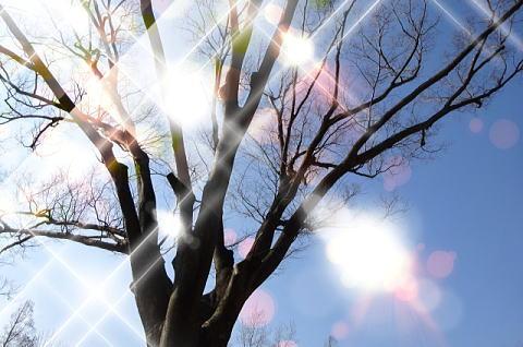 想像以上に日焼けする冬の紫外線には要注意!
