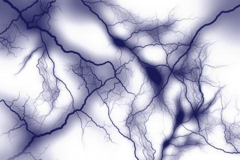 自律神経イメージ