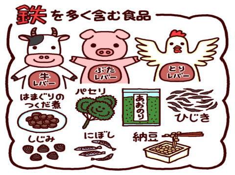 鉄を多く含む食品のイラスト