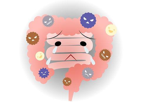 悪臭ガス濃度が高い悪玉菌優勢な腸内な
