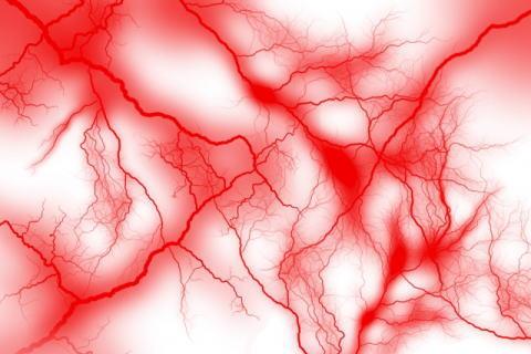 毛細血管のイメージ