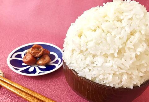 塩分が食欲を増進させる梅干があれば大盛りご飯も食べられる!