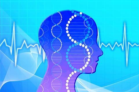 様々な信号を受けとる脳